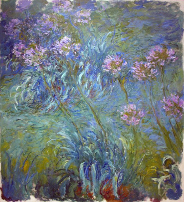 Agapanthus by Claude Monet (1914 - 1926)