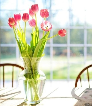 Make your Home with Flowers, Part 2